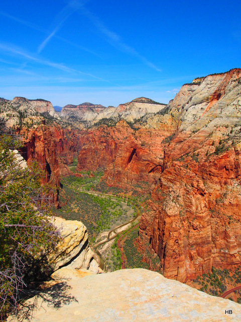 The view from the top of Angels' Landing.