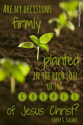 Firmly planted in the gospel