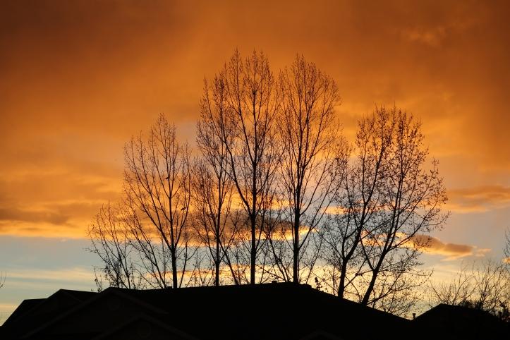 What a beautiful sunset we had tonight!