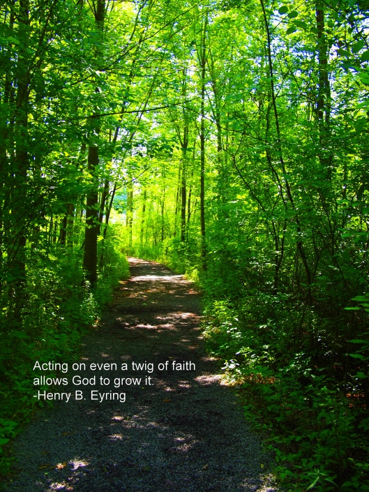 Acting on even a twig of faith allows God to grow it. - Henry B. Eyring, Mountains to Climb, April 2012 General Conference (Image 2011 Sacred Grove, Palmyra, NY)